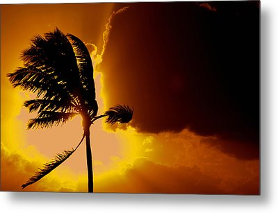 Sunset In Long Island Metal Print by Victor Minca