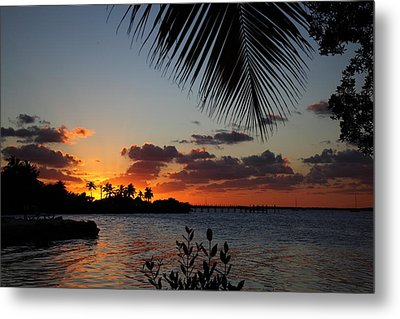 Sunset In Paradise Metal Print by Michelle Wiarda