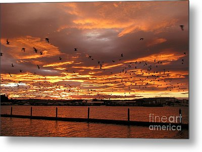 Metal Print featuring the photograph Sunset In Tauranga New Zealand by Jola Martysz