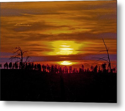 Metal Print featuring the photograph Sunset In The Black Hills 2 by Cathy Anderson
