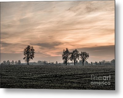 Sunset In The Country - Orange Metal Print by Hannes Cmarits