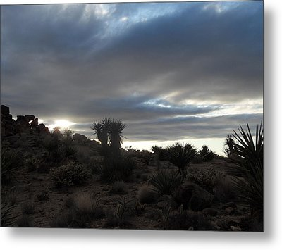 Sunset In The Desert Metal Print by James Welch