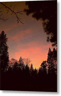 Sunset In Winter Metal Print by Michele Myers