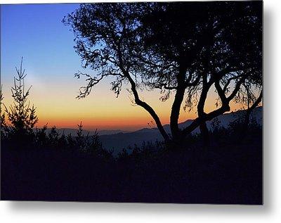 Sunset In Woodside  Metal Print
