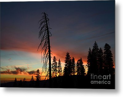 Sunset In Yosemite Metal Print