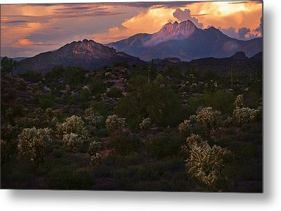Sunset Lit Cactus Over Four Peaks Metal Print