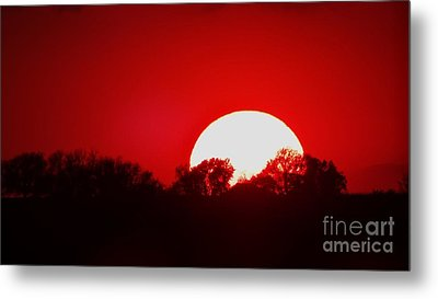 Sunset May Metal Print by J L Zarek
