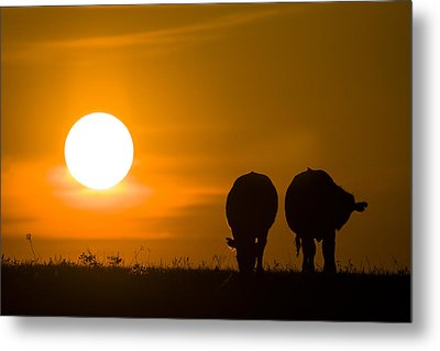 Metal Print featuring the photograph Sunset On The Flint Hills by Scott Bean