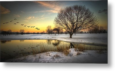 Sunset On The Golf Course Metal Print by Laura James