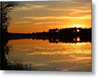Sunset On The Lake Metal Print by Cynthia Guinn