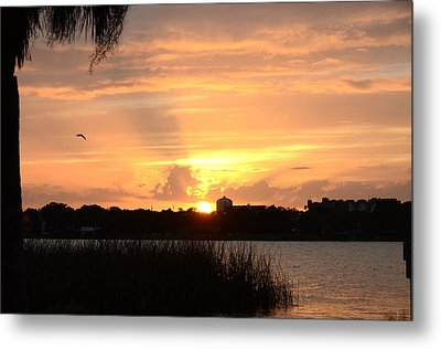 Sunset Over Lake Semniole Metal Print by Julie Cameron