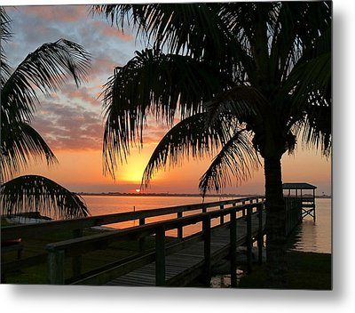 Metal Print featuring the photograph Sunset Palms by Elaine Franklin