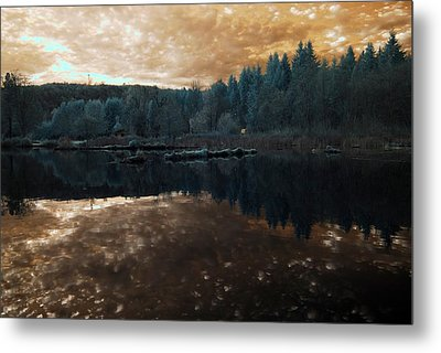 Metal Print featuring the photograph Sunset by Rebecca Parker