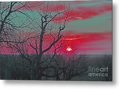 Sunset Red Metal Print by Renie Rutten