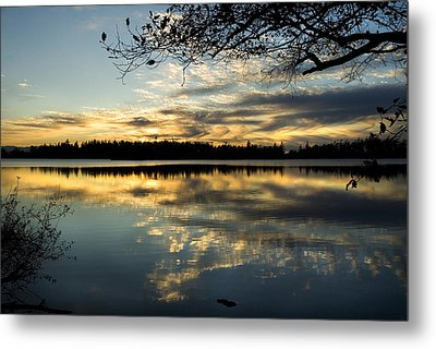 Metal Print featuring the photograph Sunset Reflection by Yulia Kazansky