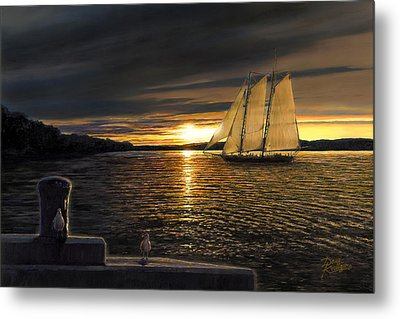 Sunset Sails Metal Print by Doug Kreuger