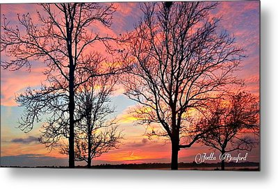 Sunset Shadow Metal Print by Joetta Beauford