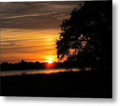 Metal Print featuring the photograph Sunset Shadowed Oak by Joetta Beauford