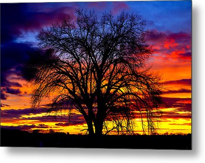 Sunset Silhouette Metal Print by Greg Norrell