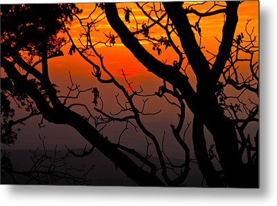 Sunset Silhouette Metal Print by John Roberts
