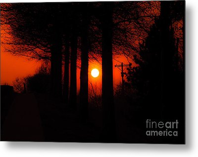 Sunset Silhouette Painterly Metal Print by Andee Design