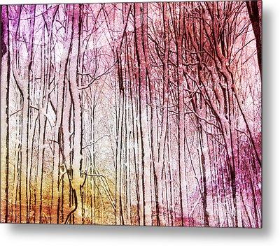 Sunset Snow Twigs Metal Print