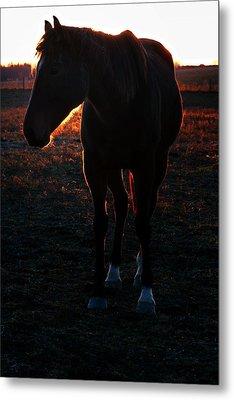 Metal Print featuring the photograph Sunset Splendor by Robert McCubbin