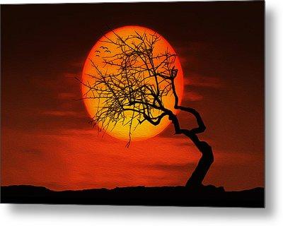 Sunset Tree Metal Print by Bess Hamiti