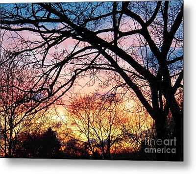 Sunset Under The Dogwoods Metal Print by Judy Via-Wolff