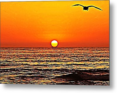Sunset With Seagull Metal Print by Sharon Soberon