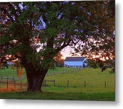 Sunset With Tree Metal Print