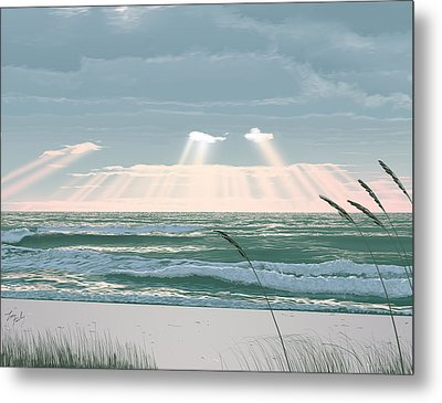 Sunshine In The Morning Metal Print by Lee Farley