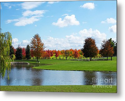 Sunshine On A Country Estate Metal Print