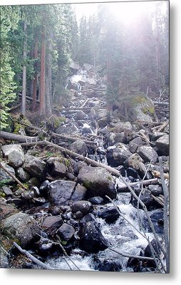 Sunshine On Brook Metal Print