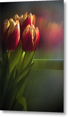 Sunshine On My Window Metal Print by Cindy Rubin