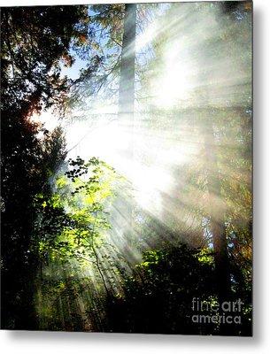 Sunstream Metal Print by Shasta Eone