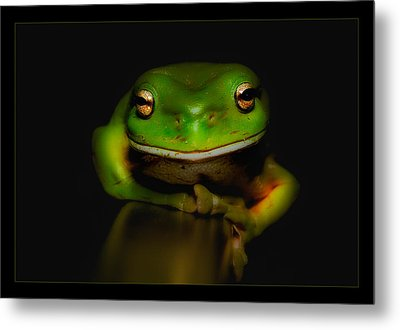 Super Frog 01 Metal Print by Kevin Chippindall