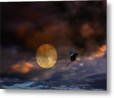 Super Moon 2013 Metal Print by Angela A Stanton