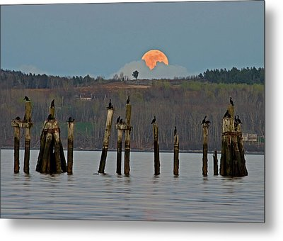 Super Moon  Metal Print by Barbara West