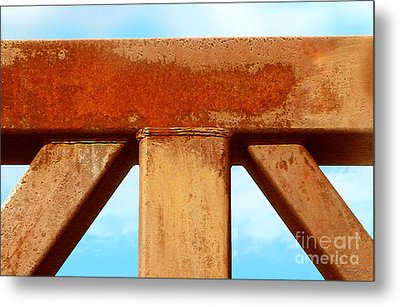 Metal Print featuring the photograph Support by Cristophers Dream Artistry