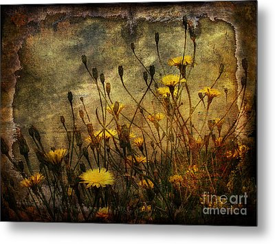 Surf And Yellow Flowers Metal Print by Jim Wright