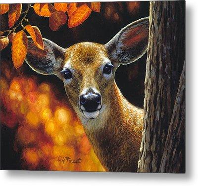 Whitetail Deer - Surprise Metal Print
