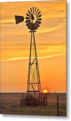 Surprise Sun Metal Print by Shirley Heier