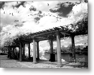 Surreal Augusta Georgia Black And White Infrared  - Riverwalk River Front Park Garden   Metal Print