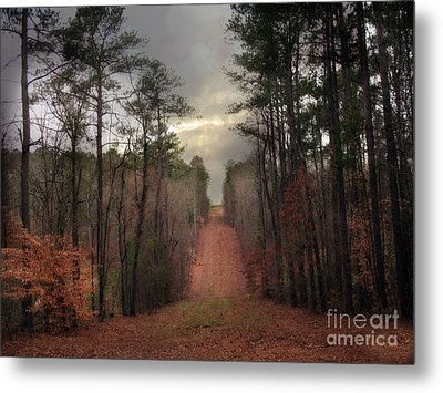 Surreal Autumn Fall South Carolina Tree Landscape Metal Print by Kathy Fornal