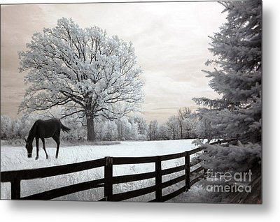 Surreal Dreamy Infrared Trees - Fantasy Infrared Horse Nature Landscape With Fence Post Metal Print by Kathy Fornal
