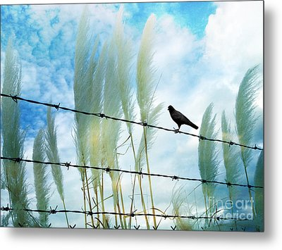 Surreal Dreamy Raven Sitting On Fence Blue Sky Metal Print by Kathy Fornal