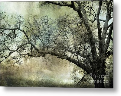 Surreal Gothic Dreamy Trees Nature Landscape Metal Print