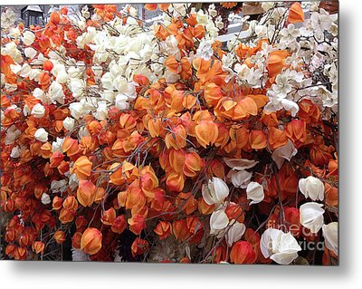 Surreal Orange And White Fall Leaves Branches And  Flowers - Colors Of Autumn Fall Leaves  Metal Print by Kathy Fornal