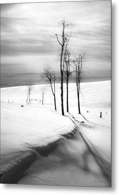 Surreal Snowscape 2 Metal Print by Theresa Tahara